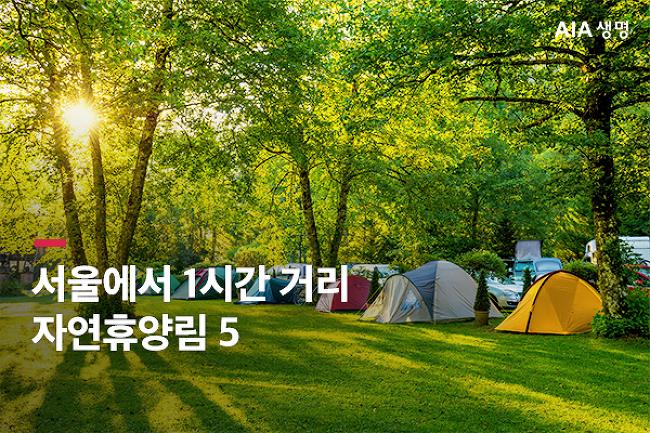 여름 향기 물씬 느껴지는 수도권 자연휴양림 5