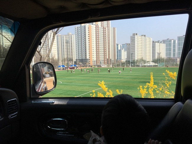주말농장 _ 대파 부추 상추 심기 및 근황