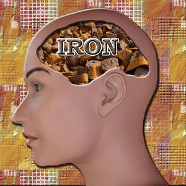 뇌가 철들어 녹슬면 치매- 그런데 녹제거 방법..