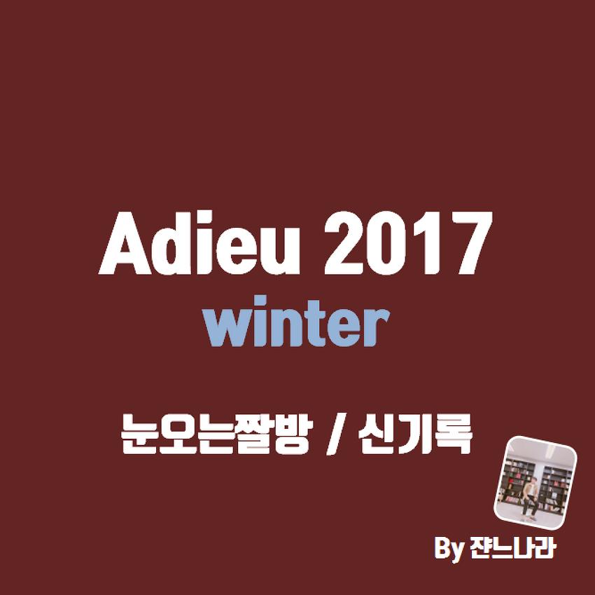 Adieu 2017 winter 눈오는짤방과 신기록수렴