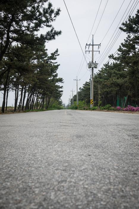 [고창 여행] 전북 고창 메르팡펜션, 풍천장어와 조개캐기 체험을 즐겨요~