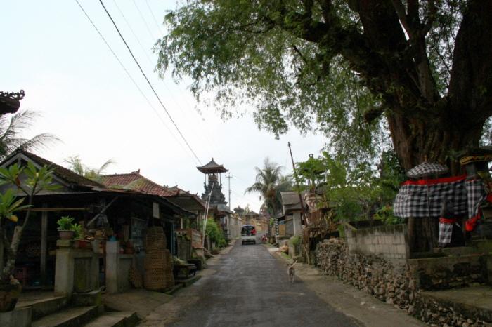 발리 데이크루즈, 누사 렘봉안 Nusa Lembongan