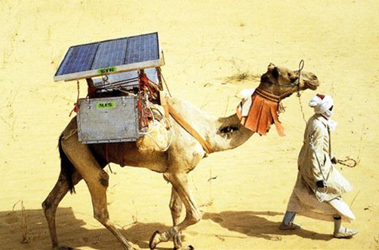 한화,한화데이즈,태양광,태양전지,수직계열화,환경,친환경에너지,신재생에너지,청정에너지,한화솔라원,한화태양광,전자계산기,친환경 냉장고,의약품,인류복지,버스,공회전,버스 승강장,솔라트리,전력,전자기기