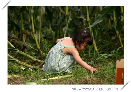 농촌체험마을의 성공전략 (5)