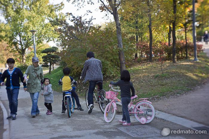 시끌벅적한 가을을 만날 수 있는 '서울숲' 산책