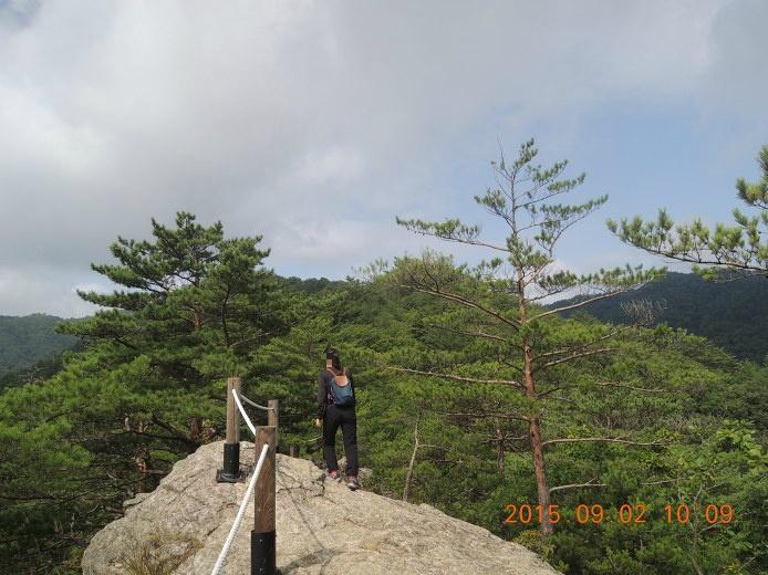 응봉산 등산코스 등산지도