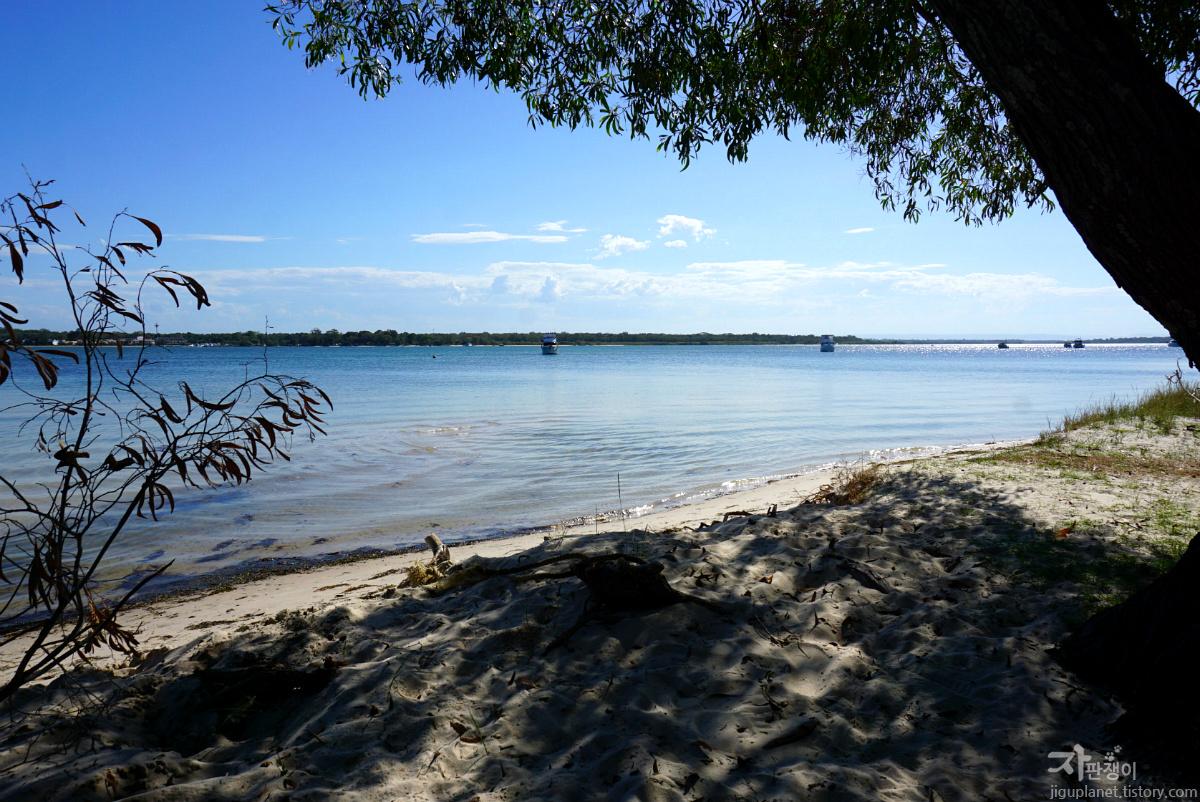브리즈번여행 - 느리고 천천히 흘러가는 호주여행 브라이비 아일랜드 Bribie Island