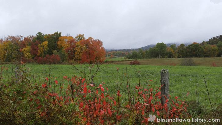 가을 단풍 여행