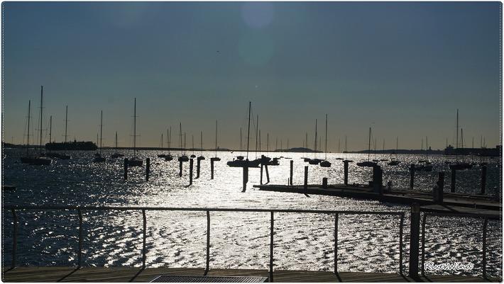 보스턴의 아침바다