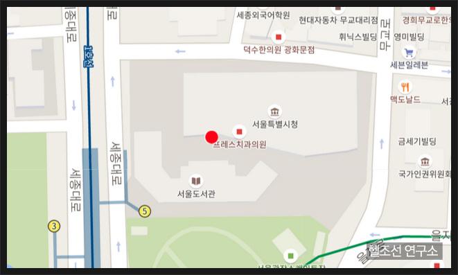 애슐리 매디슨 서울시청
