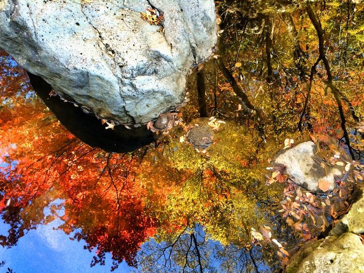 제주의 가을은 어디에나 있다