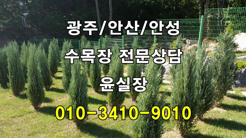 경기도 안성 수목장