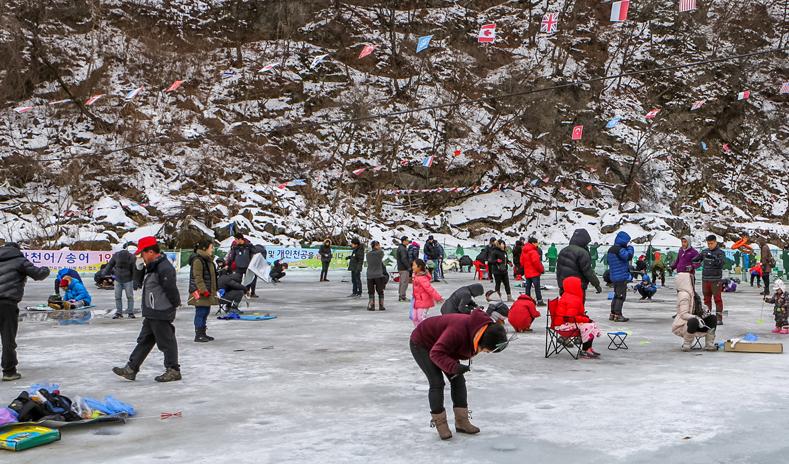 밤나무골 산천어 송어축제 : 산천어, 송어낚시, 썰매도 타고! 재미있게 겨울을 즐길 수 있는 곳! 천헤의 자연경관을 자랑하는 가평의 밤나무골