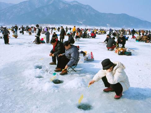 인제빙어축제, 2015 인제 빙어축제