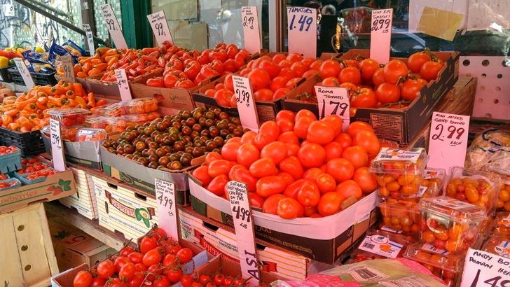 토마토 종류