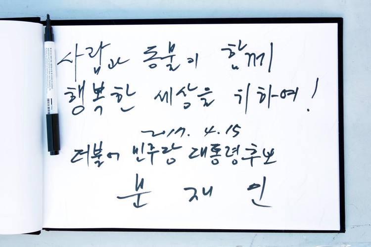 문재인의 '반려동물이 행복한 대한민국 5대 핵심 공약'과 문재인의 유기견 이야기
