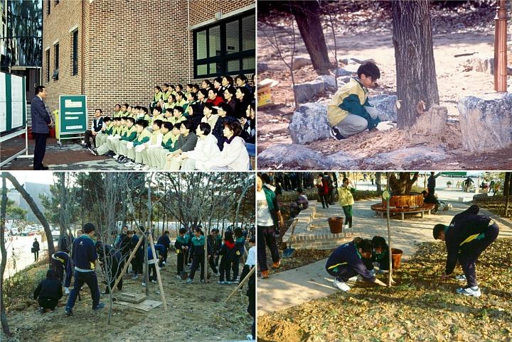 화랑초등학교 나무심기