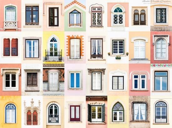 세계의 창문으로 보는 문화의 다양성