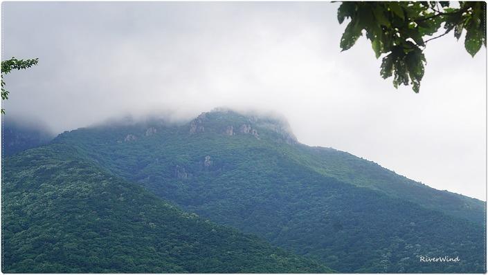 산구름 머무는 영축산