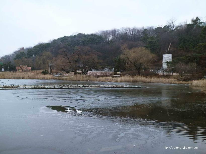 보라매공원 호수
