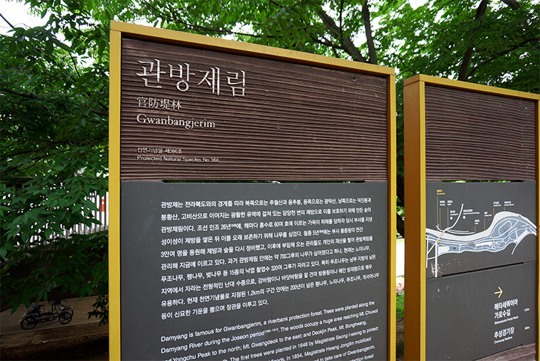 담양여행 사진여행 출사지추천
