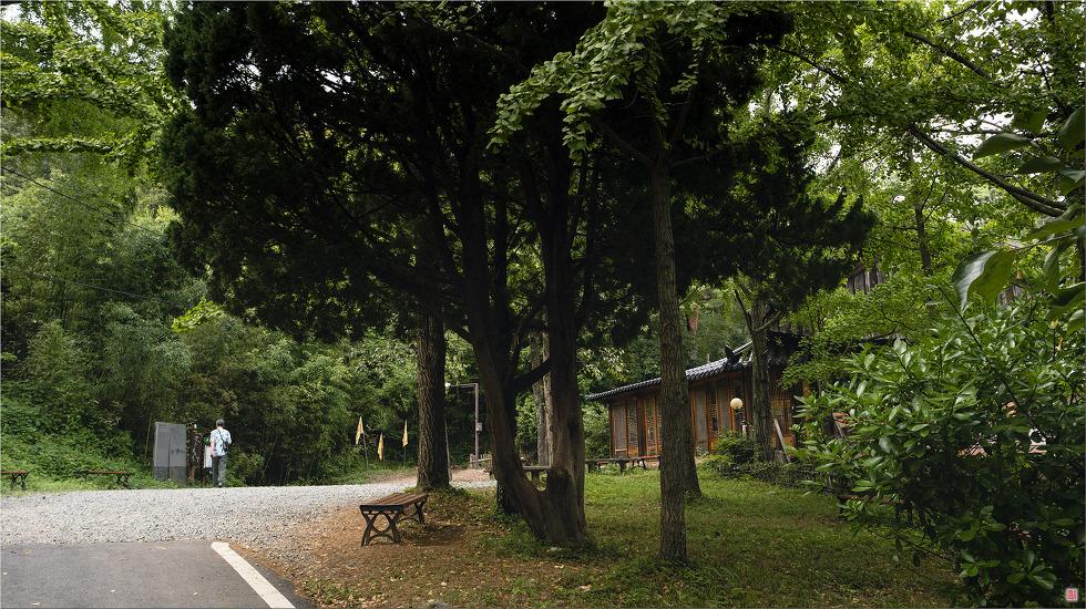 [삼성NX500] 茶山艸堂_ 다산초당순례