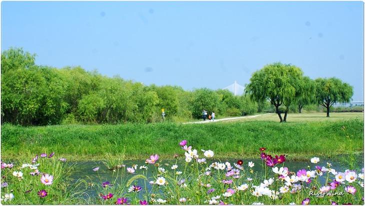 화명생태공원의 가을 풍경