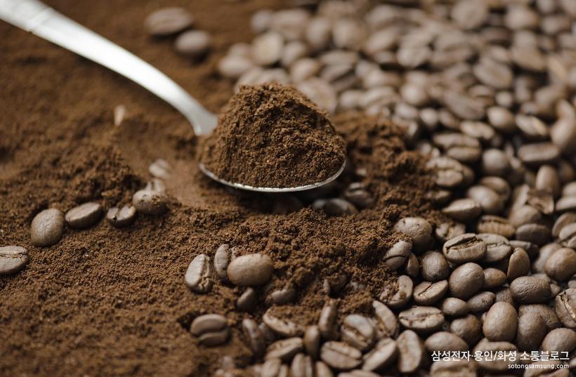 커피 찌꺼기의 다양한 활용법